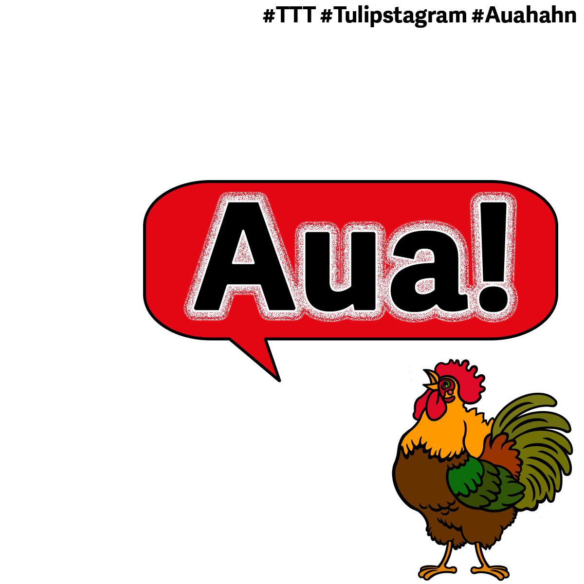 Der #Auahahn #TTT #Tulipstagram